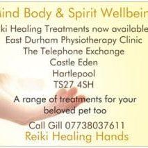 Reiki- Healing Hands