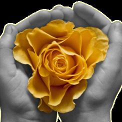 Deep Reiki Healing – Leeds & Wakefield