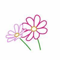 Wildflower Healing