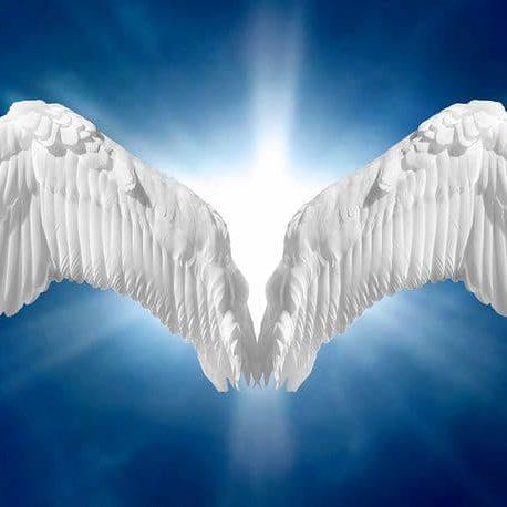 Angel wings on heavenly blue background