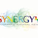 SynergyA8C-1