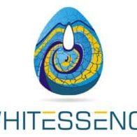 WHITESENCE_FIN